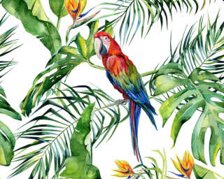A.S. Création Photo wallpaper «Parrot 1» DD116614