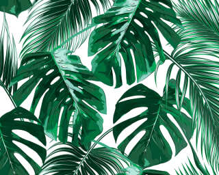 Livingwalls Photo wallpaper «PalmLeaves1» DD118572
