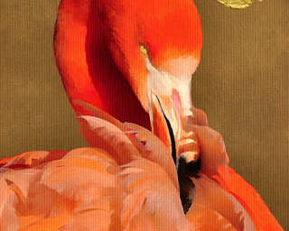 Livingwalls Fototapete «FlamingoInSun» DD119957