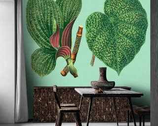 Kathrin und Mark Patel Fototapete «leaf garden 2» DD121952