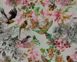 Kathrin und Mark Patel impression numérique «funky birds 1» DD110176