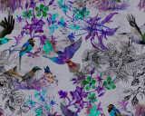 Kathrin und Mark Patel impression numérique «funky birds 2» DD110181
