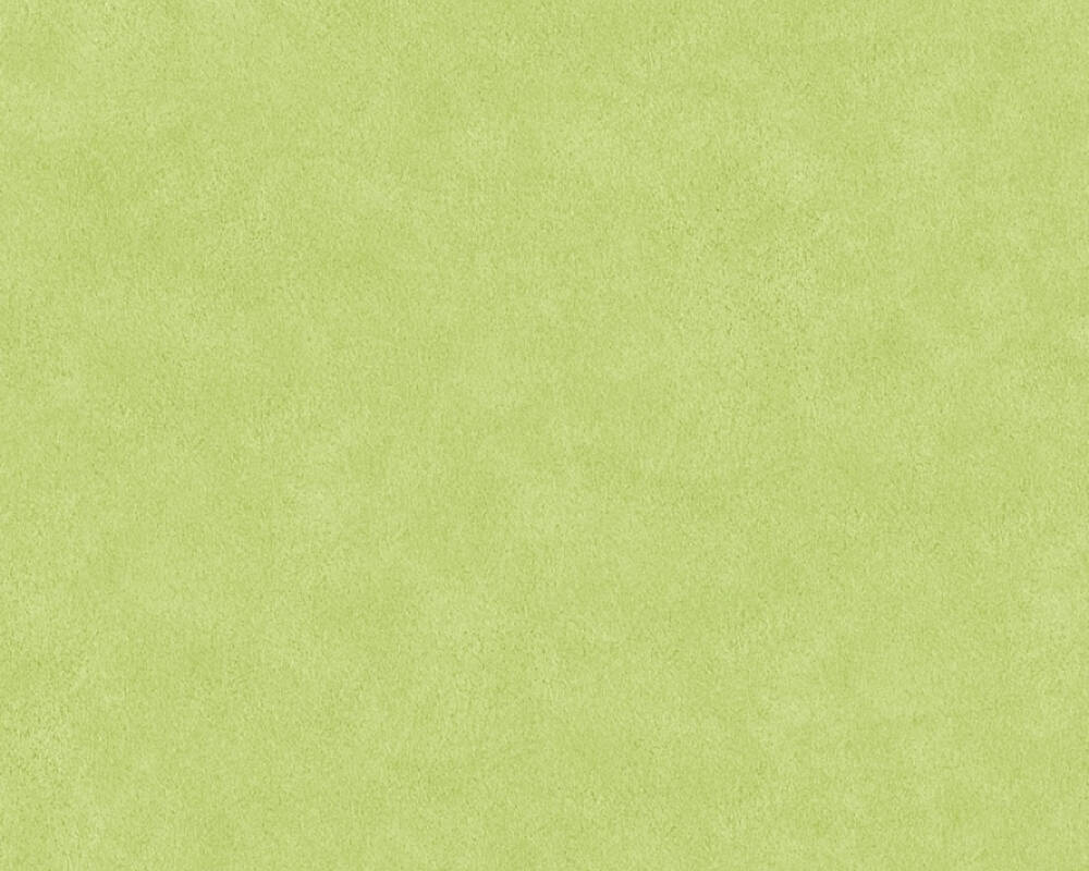A.S. Création Wallpaper 362067