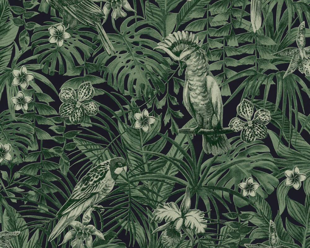 A.S. Création papier peint Jungle, noir, vert 372101
