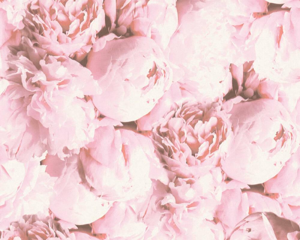 Обои . Цветы foto 9