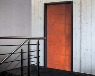 Livingwalls Door mural 020012