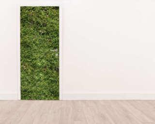 Livingwalls Door mural 020027