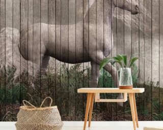Photo wallpaper «fantasy 3» DD113957