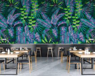 Photo wallpaper «tropicana 5» DD114082