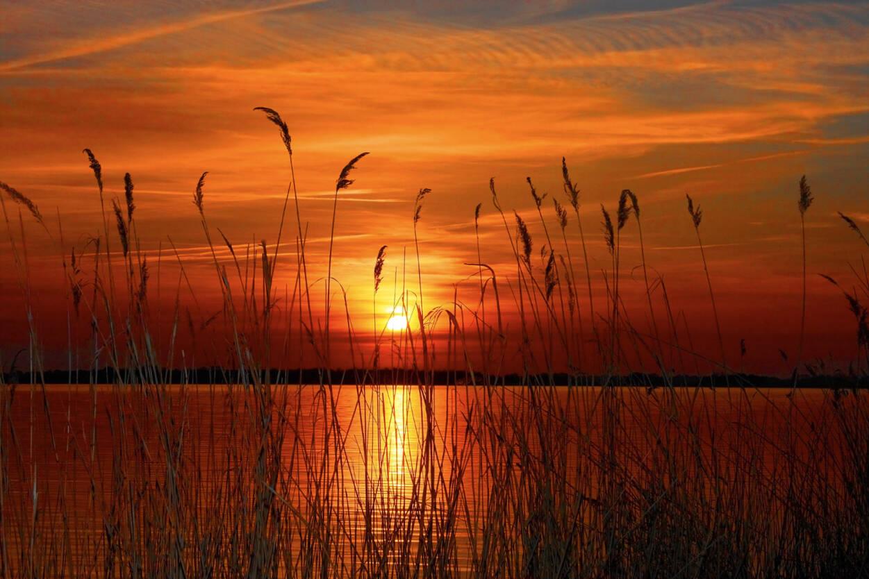 Livingwalls Fototapete «Sunset at the lake» 036570