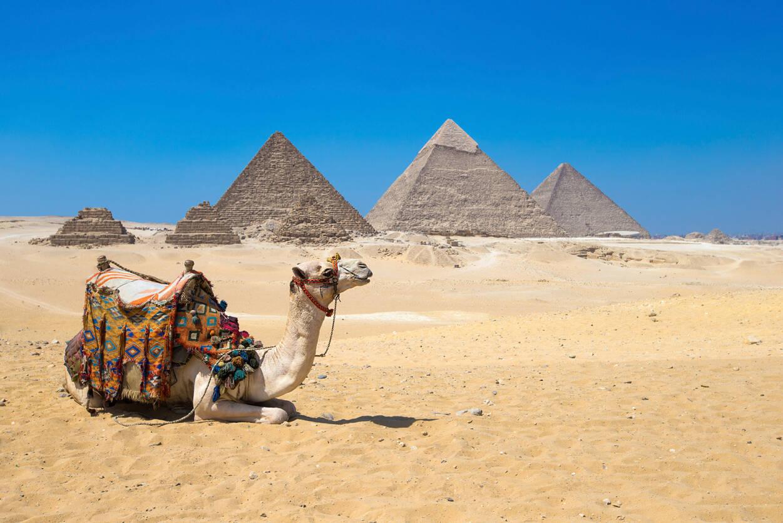Livingwalls Photo wallpaper Giza in Cairo 470601