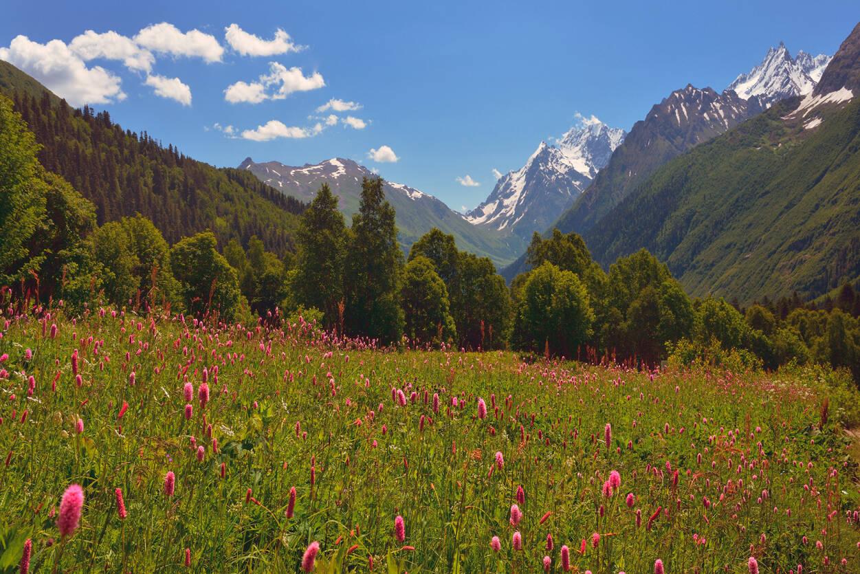 Livingwalls Photo wallpaper Mountains 470613