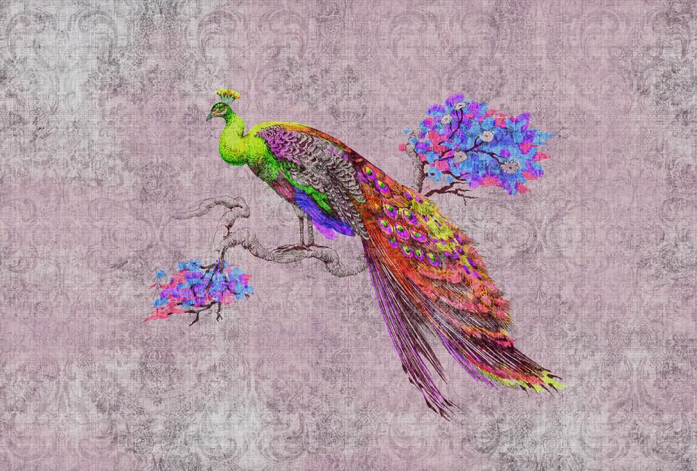 Kathrin und Mark Patel Photo wallpaper peacock 2 DD114312