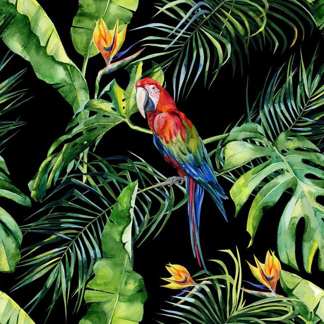 A.S. Création Fototapete Parrot 2 DD116615