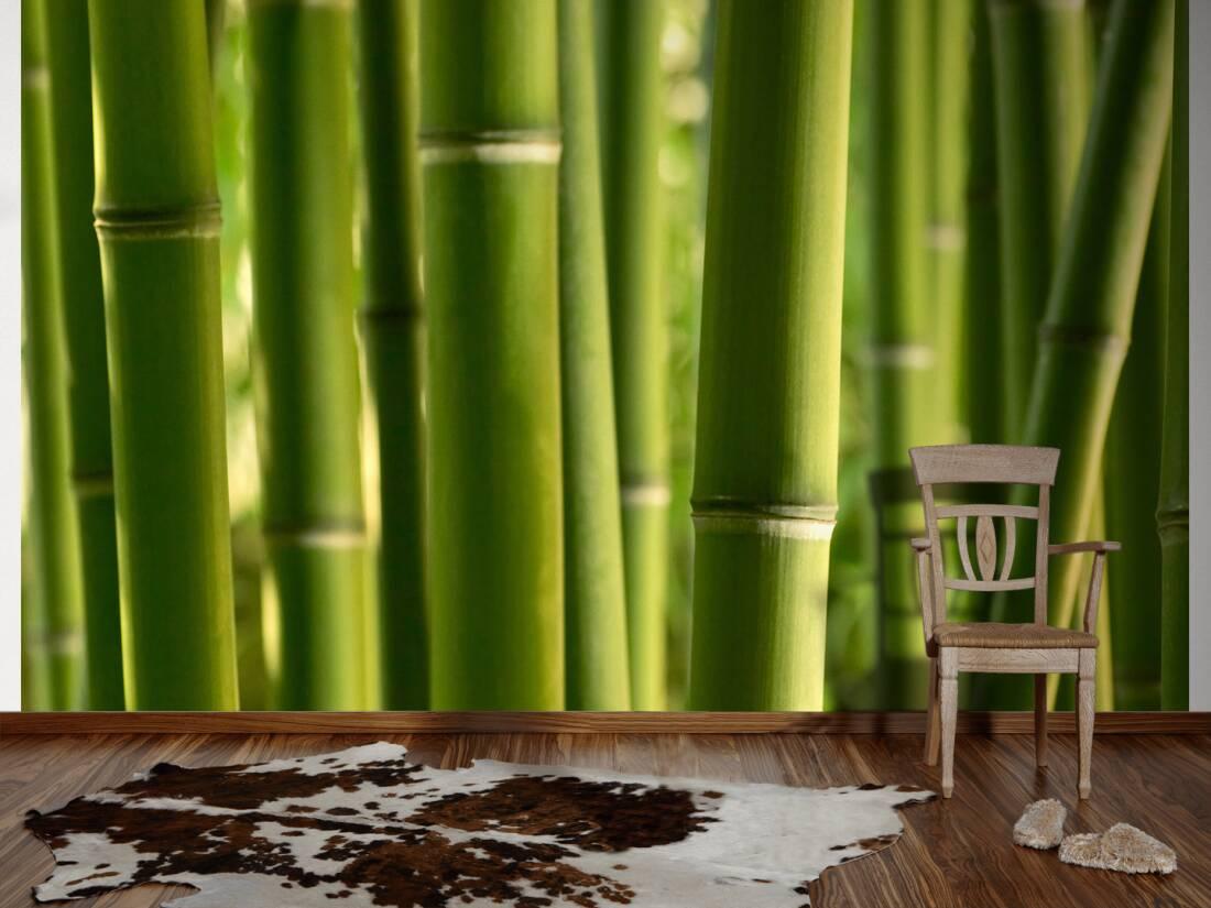 livingwalls fototapete bambus xl 031053. Black Bedroom Furniture Sets. Home Design Ideas