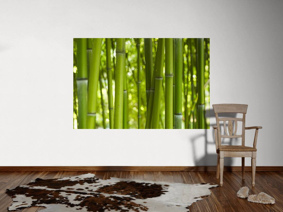 livingwalls fototapete bambus m 036311. Black Bedroom Furniture Sets. Home Design Ideas