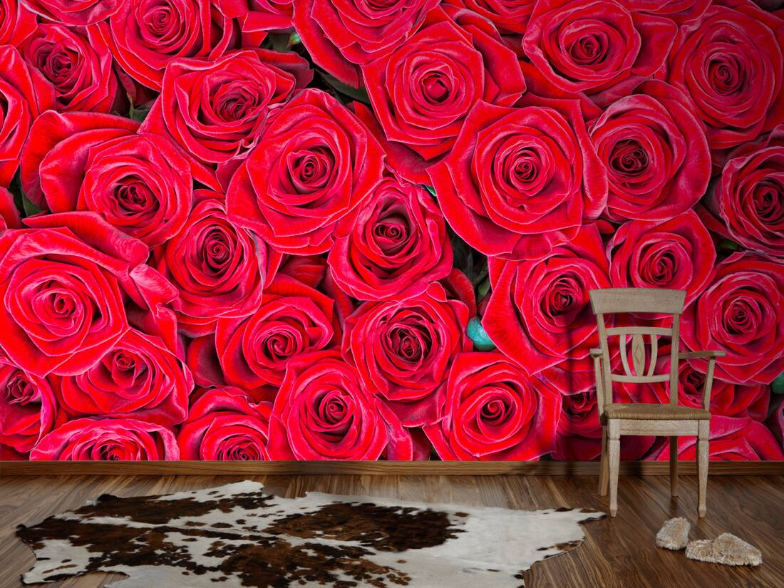 livingwalls fototapete rote rosen 470357. Black Bedroom Furniture Sets. Home Design Ideas