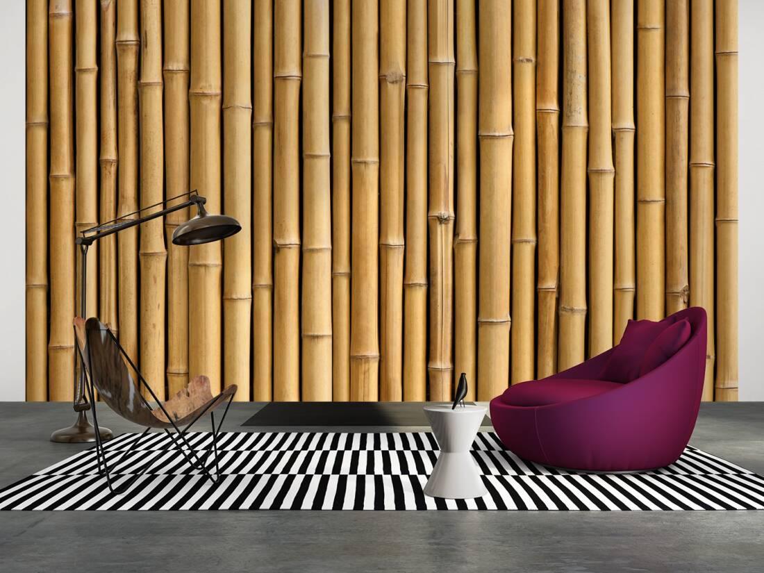 bambus xxl bambustrnds. Black Bedroom Furniture Sets. Home Design Ideas