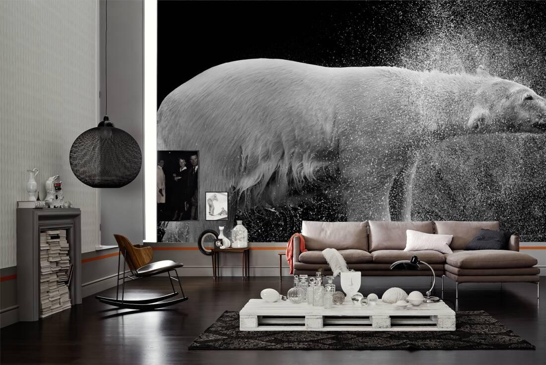 Architects paper fototapete «eisbär in schwarz weiß» 470510