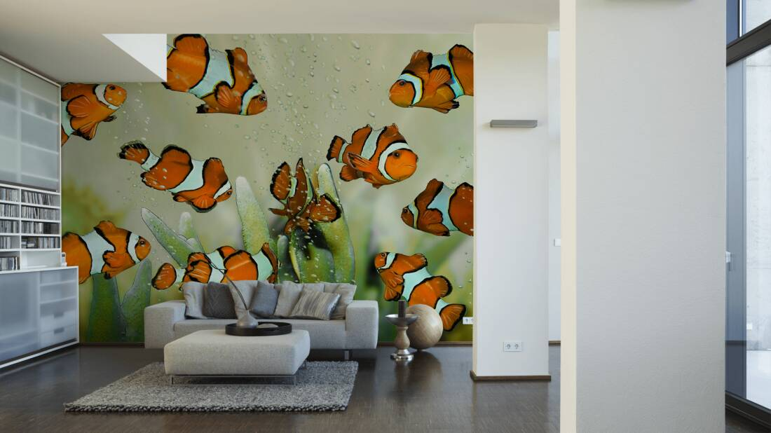 Livingwalls Fototapete Clownfish 031030; simuliert auf der Wand