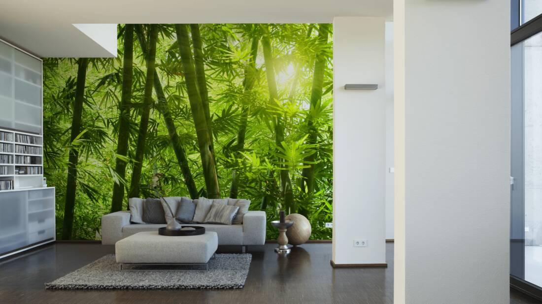 Livingwalls Fototapete «bambuswald» 036300 Fototapete Grn Wohnzimmer