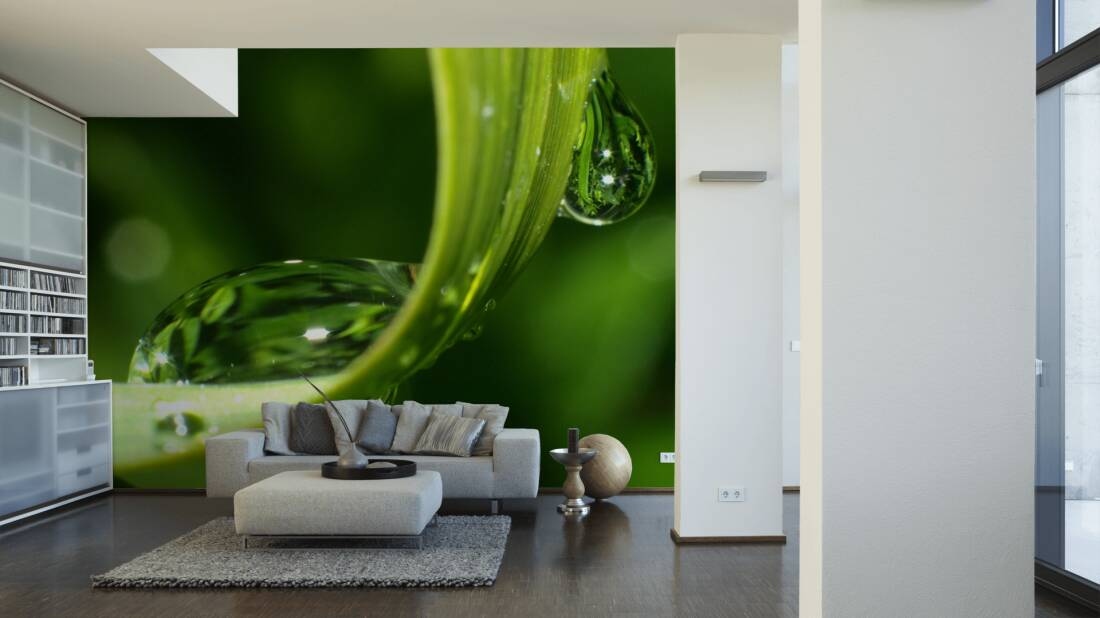 Livingwalls Fototapete Dewdrops on grass 036340; simuliert auf der Wand