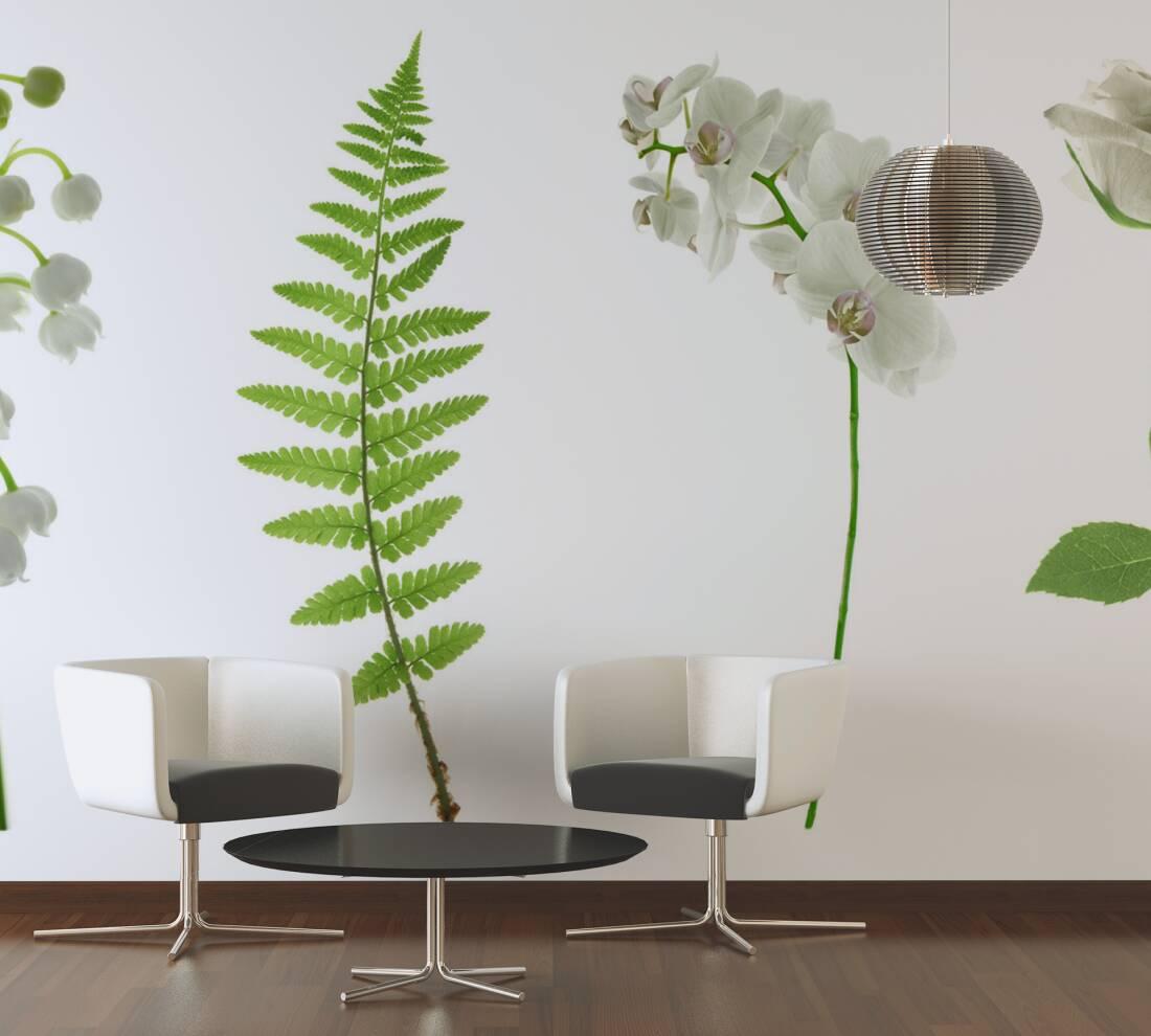 livingwalls fototapete wei e blumen 036200. Black Bedroom Furniture Sets. Home Design Ideas
